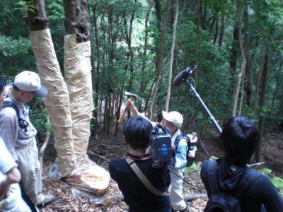 ナラ枯れ被害防止活動、7月9日(月)テレビ大阪で放映予定!02