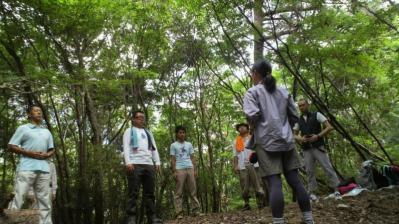 森のセラピー モニター01