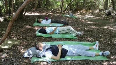 森のセラピー モニター02