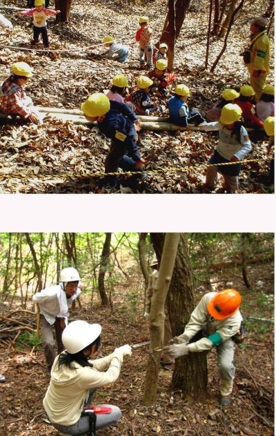 「明るい森」へは、ちびっ子たちもやってくる!=箕面・如意谷(にょいだに)のしおんじ山。 《下》「明るい森」を目指し、里山手入れの実習風景(『みのお森の学校』)