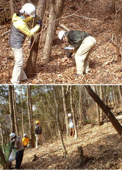 山中を調査するボランティアたち