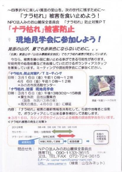 「ナラ枯れ」被害防止 現地見学会 チラシ