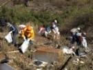 里山の清掃