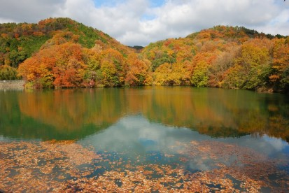 五藤池から山麓秋
