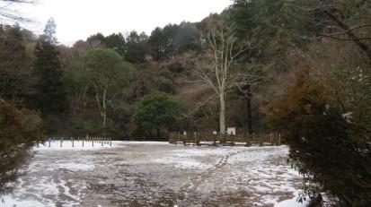 2.15残雪のもみじ広場 (2)