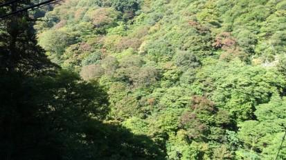 大滝付近10.27