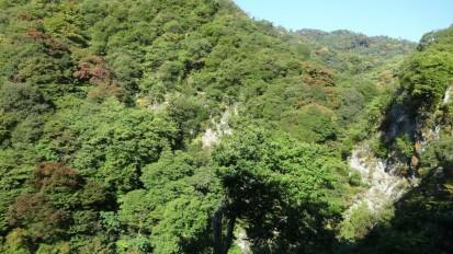 大滝付近10.27 (2)