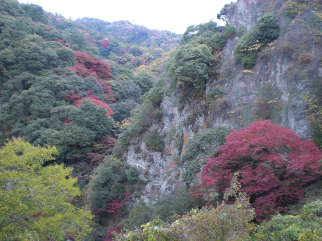箕面大滝上の紅葉