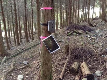 定点カメラ