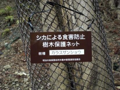 樹木保護ネット看板