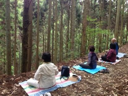35.14森のセラピー