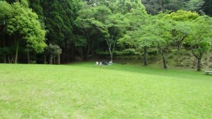 25.14森のセラピー