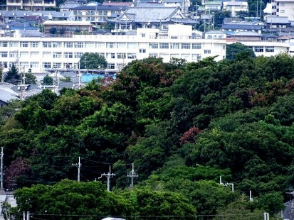 瀬川神社1