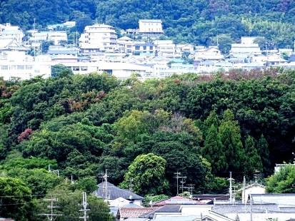 瀬川神社2