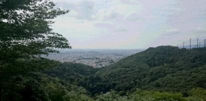 49.21森のセラピー