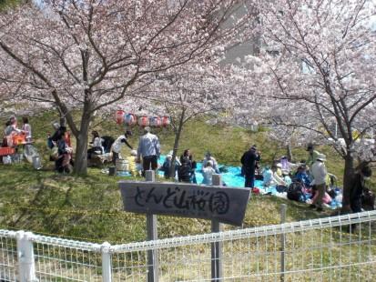 とんど山桜園