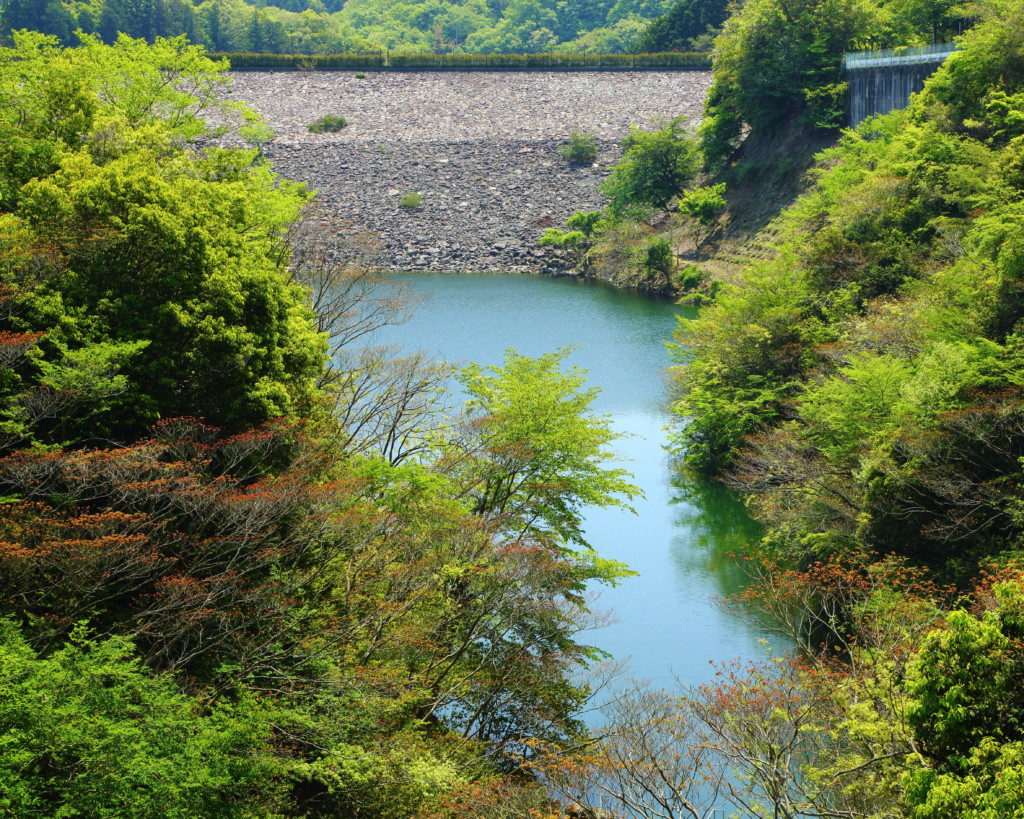 西日本豪雨時における箕面川ダムの水位について | みのお山なみネット ...